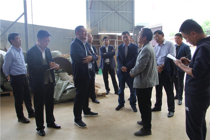 市人大来商视察调研中药材产业发展及贯彻《陕西省秦岭生态环境保护条例》加强水资源保护工作