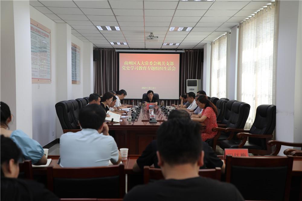 区人大机关党支部召开党史学习教育专题组织生活会